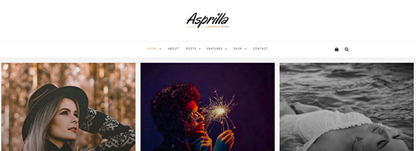 Asprilla - a Multi-Concept Blog Theme For WordPress Preview - ThemeForest Simple WordPress Theme for Quick Website Making