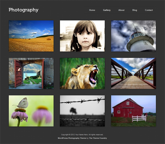 117 40 Beautiful Gallery Wordpress Themes to Insprite You