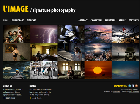 202 40 Beautiful Gallery Wordpress Themes to Insprite You
