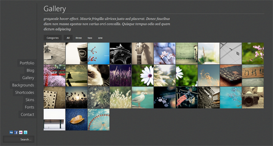 222 40 Beautiful Gallery Wordpress Themes to Insprite You