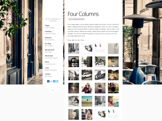 45 40 Beautiful Gallery Wordpress Themes to Insprite You