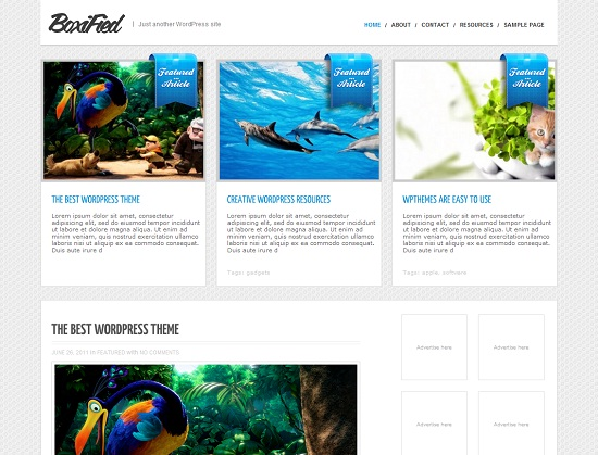 BoxiFied 35 Free and Professional looking WordPress Themes