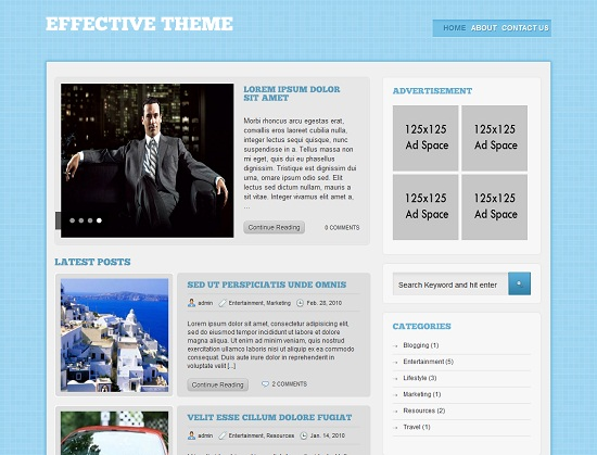Effective 35 Free and Professional looking WordPress Themes