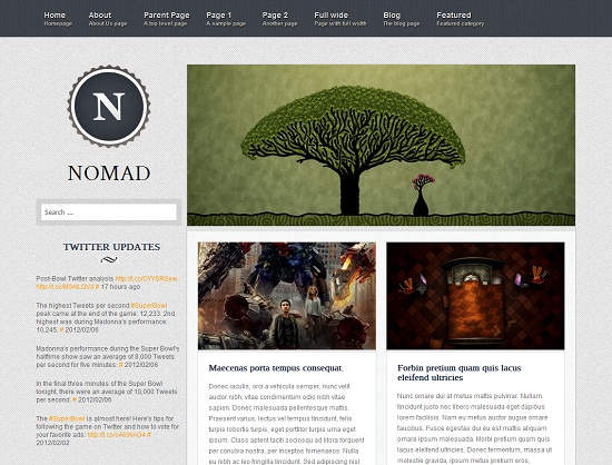 Nomad 35 Free and Professional looking WordPress Themes