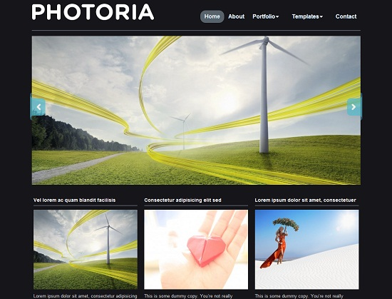 Photoria 35 Free and Professional looking WordPress Themes