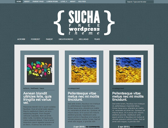 Sucha 35 Free and Professional looking WordPress Themes